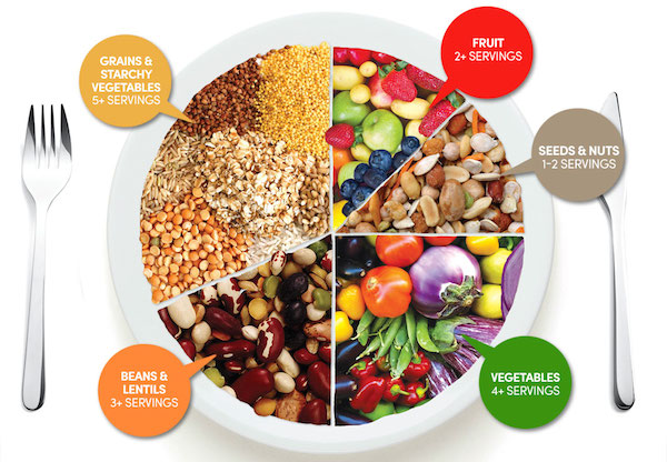 A Plant-Based Diet